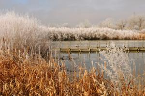 lake mary frost - Rich Keen DPRA